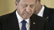 Victime d'un coup d'Etat avorté qui a eu lieu en Turquie le 15 juillet, le président Recep Tayyip Erdoğan mène une véritable purge contre l'opposition et ses détracteurs politiques.